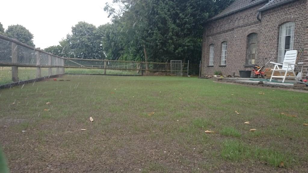 Garten Die Dritte Rasen Saen Handwerkerblog